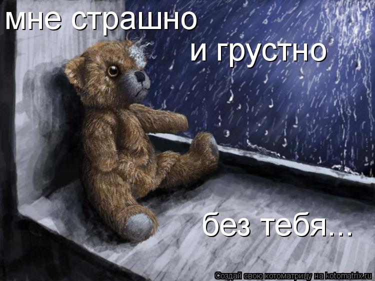 Котоматрица: мне страшно и грустно без тебя...