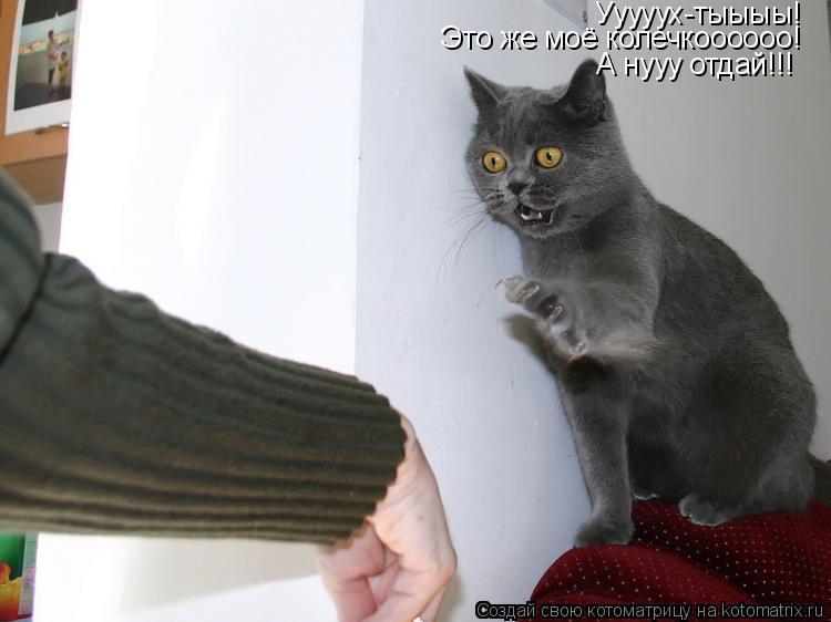 Котоматрица: Ууууух-тыыыы! Это же моё колечкоооооо! А нууу отдай!!!