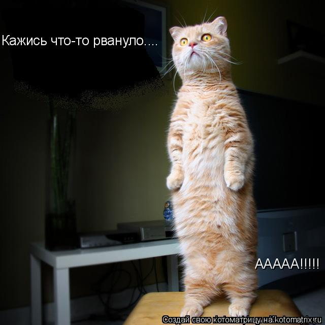 Котоматрица: Кажись что-то рвануло.... ААААА!!!!!