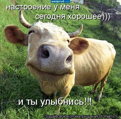 Котоматрица: настроение у меня сегодня хорошее))) и ты улыбнись!!!