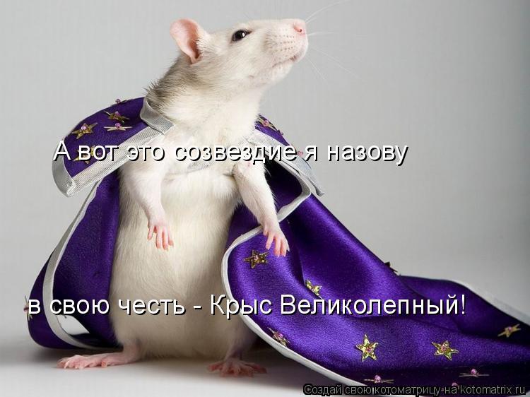 http://kotomatrix.ru/images/lolz/2008/08/28/g7.jpg