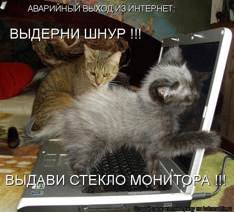 Котоматрица: ВЫДЕРНИ ШНУР !!! ВЫДАВИ СТЕКЛО МОНИТОРА !!! АВАРИЙНЫЙ ВЫХОД ИЗ ИНТЕРНЕТ: