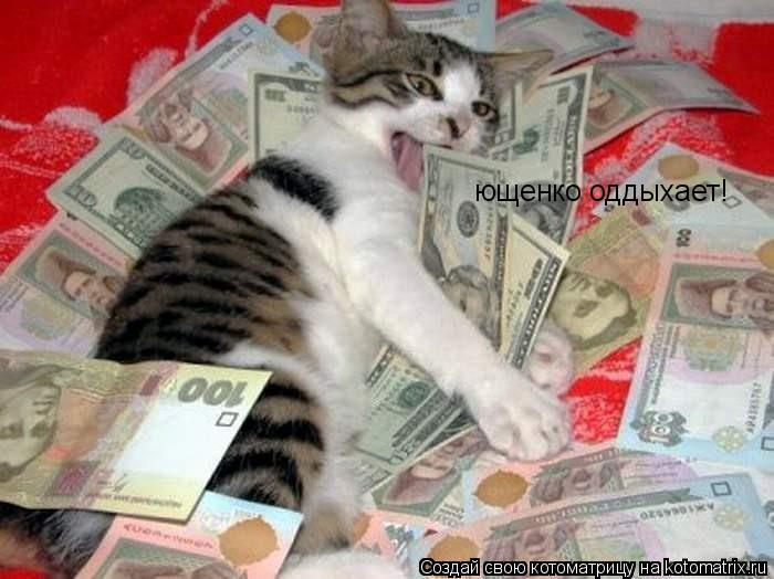 Котоматрица: ющенко оддыхает!