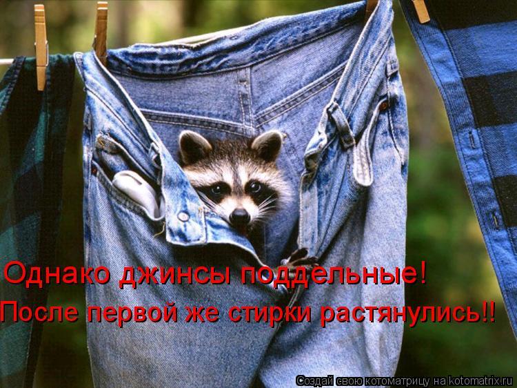 Котоматрица: Однако джинсы поддельные! После первой же стирки растянулись!!