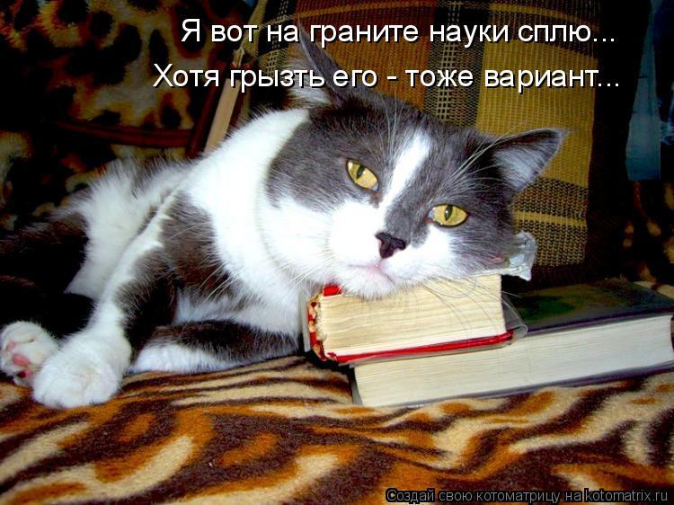 Котоматрица: Я вот на граните науки сплю... Хотя грызть его - тоже вариант...