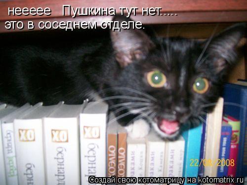 Котоматрица: неееее   Пушкина тут нет..... это в соседнем отделе.
