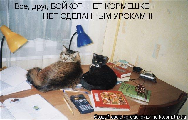 Котоматрица: Все, друг, БОЙКОТ: НЕТ КОРМЕШКЕ - НЕТ СДЕЛАННЫМ УРОКАМ!!!