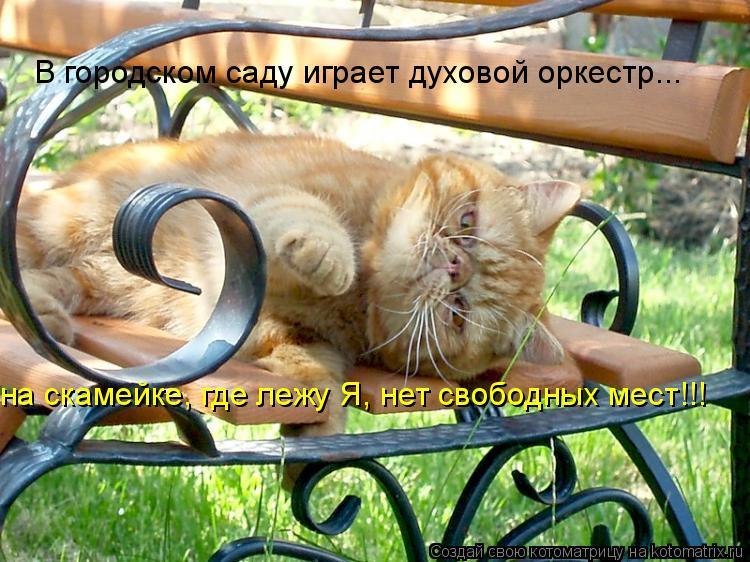 Котоматрица: В городском саду играет духовой оркестр... на скамейке, где лежу Я, нет свободных мест!!!