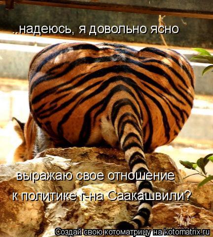 Котоматрица: ..надеюсь, я довольно ясно  выражаю свое отношение к политике г-на Саакашвили?