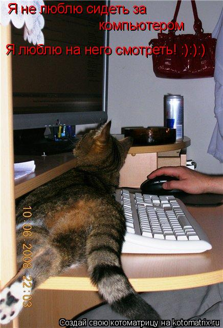 Котоматрица: Я не люблю сидеть за  компьютером  Я люблю на него смотреть! :):):)
