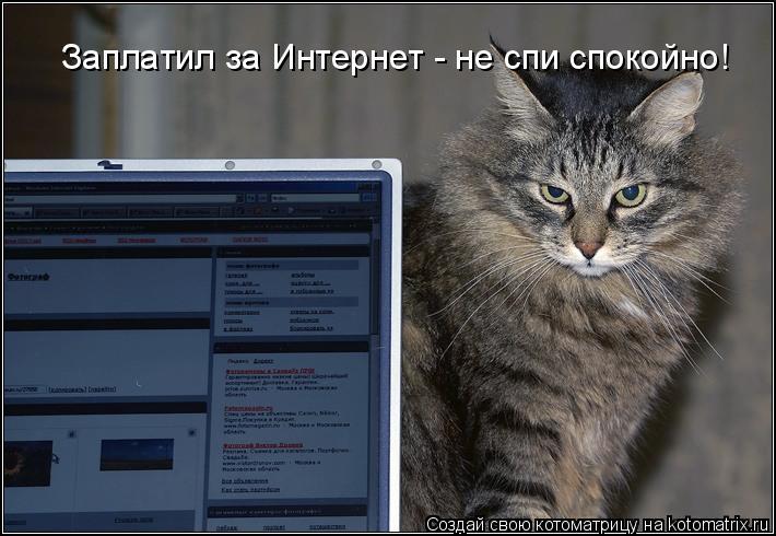 Котоматрица: Заплатил за Интернет - не спи спокойно!
