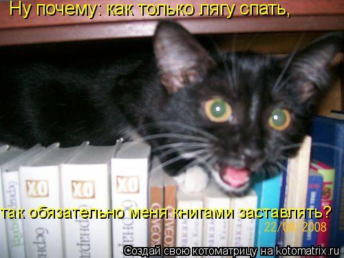 Котоматрица: Ну почему: как только лягу спать,  так обязательно меня книгами заставлять?