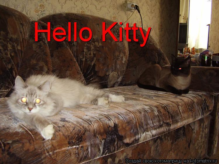 Котоматрица: Hello Kitty