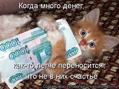 Котоматрица: Когда много денег,  как-то легче переносится, что не в них счастье