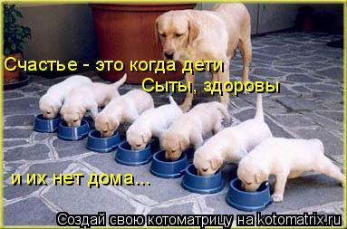 Котоматрица: Счастье - это когда дети  Сыты, здоровы и их нет дома...