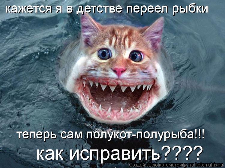 Котоматрица: кажется я в детстве переел рыбки теперь сам полукот-полурыба!!! как исправить????