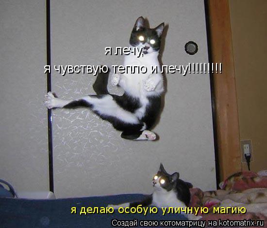 http://kotomatrix.ru/images/lolz/2008/08/30/Oy.jpg