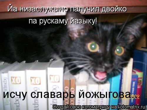 Котоматрица: Йа низаслужыно палучил двойко  па рускаму йазыку!  исчу славарь йожыгова...
