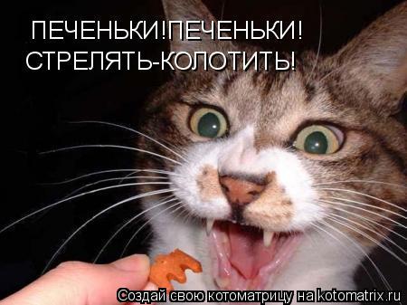 Котоматрица: ПЕЧЕНЬКИ!ПЕЧЕНЬКИ! СТРЕЛЯТЬ-КОЛОТИТЬ!