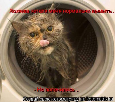 Котоматрица: Хозяева хотели меня нормально вымыть... - Но поленились...