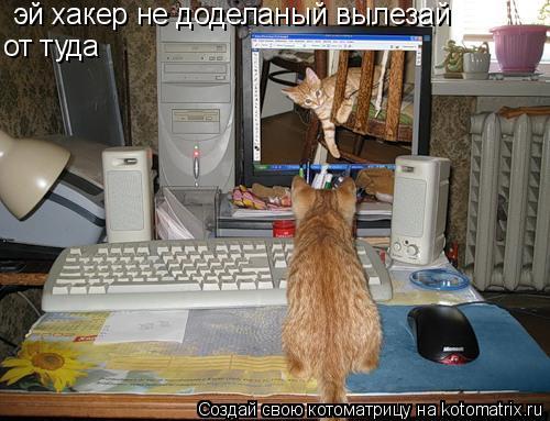 Котоматрица: эй хакер не доделаный вылезай от туда