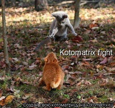 Котоматрица: Kotomatrix fight