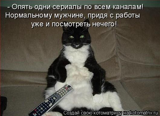 Котоматрица: - Опять одни сериалы по всем каналам! Нормальному мужчине, придя с работы уже и посмотреть нечего!