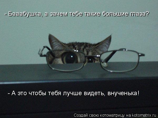 Котоматрица: - Бааабушка, а зачем тебе такие большие глаза? - А это чтобы тебя лучше видеть, внученька!