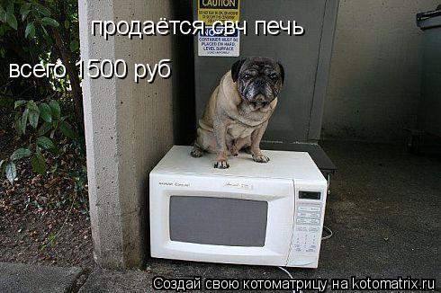 Котоматрица: продаётся свч печь всего 1500 руб