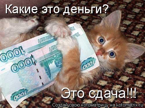 Котоматрица: Какие это деньги?  Это сдача!!!