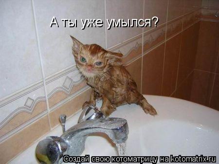 Котоматрица: А ты уже умылся?