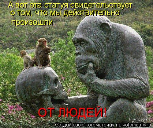 Котоматрица: А вот эта статуя свидетельствует о том, что мы действительно произошли ОТ ЛЮДЕЙ!