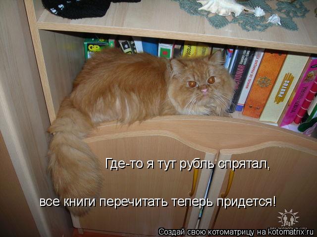 Котоматрица: Где-то я тут рубль спрятал,  все книги перечитать теперь придется!
