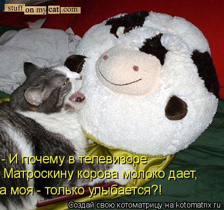 Котоматрица: - И почему в телевизоре Матроскину корова молоко дает, а моя - только улыбается?!