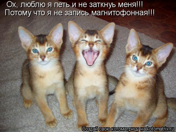 Котоматрица: Ох, люблю я петь и не заткнуь меня!!! Потому что я не запись магнитофонная!!!