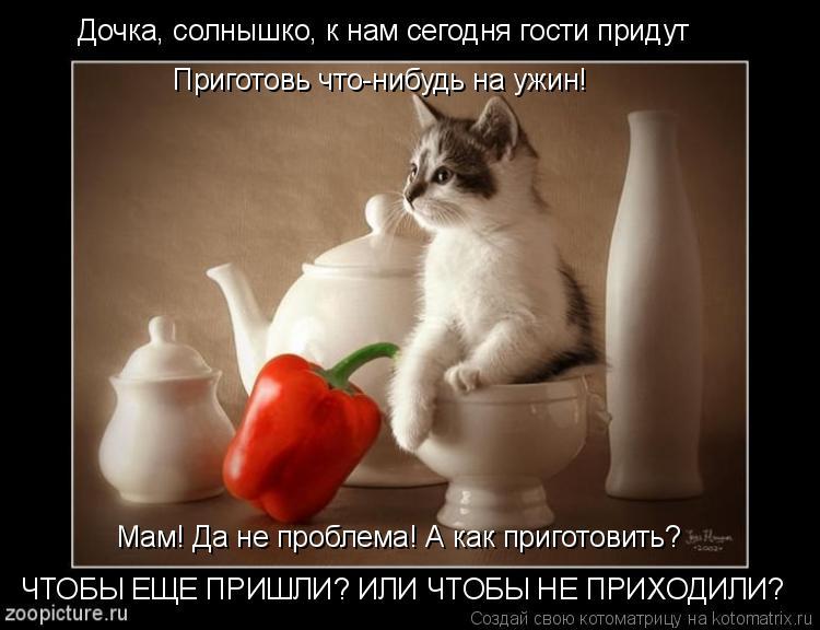 Котоматрица: Дочка, солнышко, к нам сегодня гости придут Приготовь что-нибудь на ужин! Мам! Да не проблема! А как приготовить? ЧТОБЫ ЕЩЕ ПРИШЛИ? ИЛИ ЧТОБЫ Н