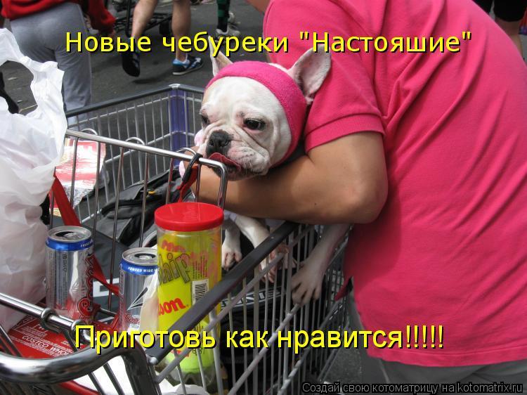 """Котоматрица: Новые чебуреки """"Настояшие"""" Приготовь как нравится!!!!!"""