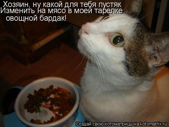 Котоматрица: Хозяин, ну какой для тебя пустяк Изменить на мясо в моей тарелке  овощной бардак!