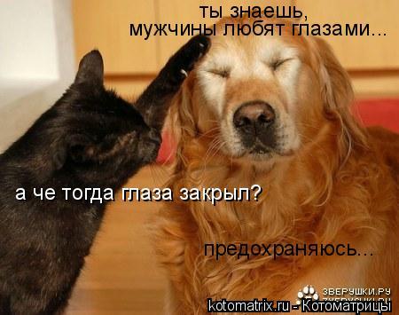 Котоматрица: ты знаешь, мужчины любят глазами...  а че тогда глаза закрыл? предохраняюсь...