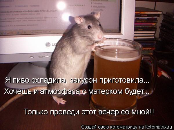 Котоматрица: Я пиво охладила, закусон приготовила... Хочешь и атмосфэра с матерком будет... Только проведи этот вечер со мной!!