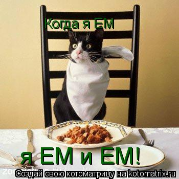 Котоматрица: Когда я ЕМ я ЕМ и ЕМ!