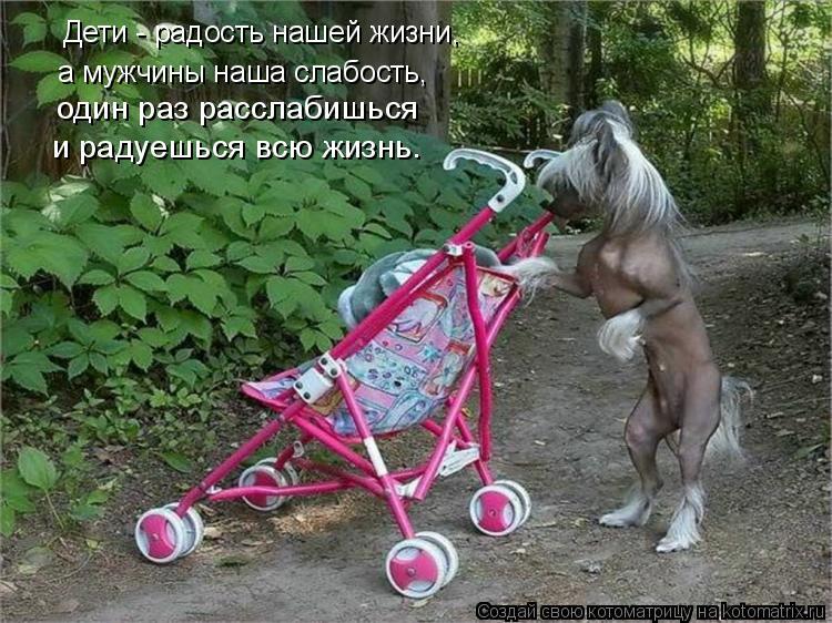 Котоматрица: Дети - радость нашей жизни, а мужчины наша слабость, один раз расслабишься  и радуешься всю жизнь.