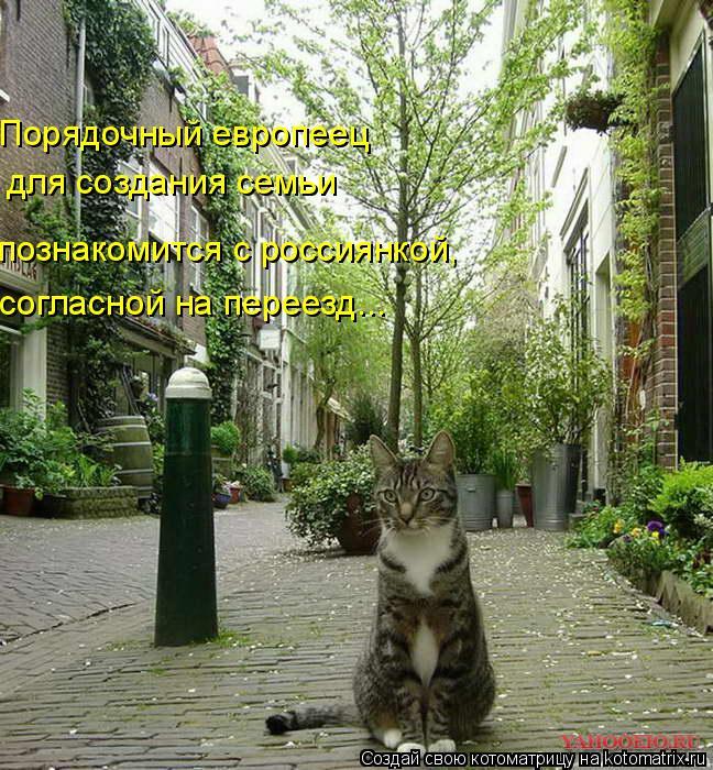 Котоматрица: Порядочный европеец  для создания семьи познакомится с россиянкой,  согласной на переезд...