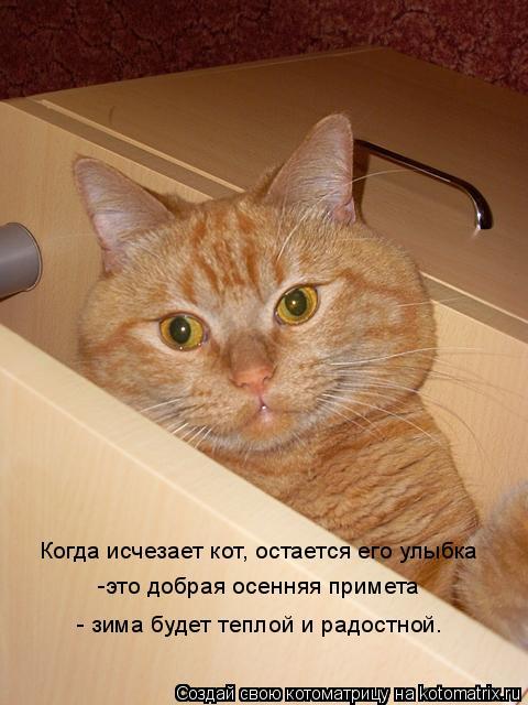 Котоматрица: Когда исчезает кот, остается его улыбка -это добрая осенняя примета  - зима будет теплой и радостной.