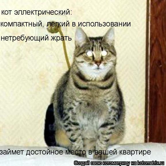 Котоматрица: кот эллектрический: компактный, легкий в использовании нетребующий жрать  займет достойное место в вашей квартире