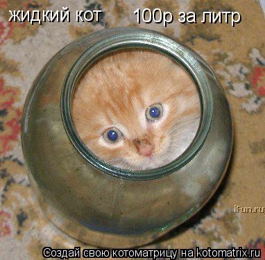 Котоматрица: жидкий кот 100р за литр