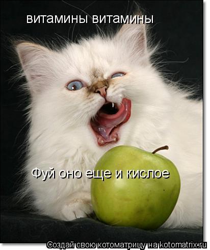 Котоматрица: витамины витамины Фуй оно еще и кислое