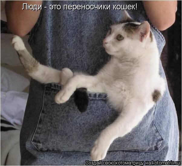 Котоматрица: Люди - это переносчики кошек!