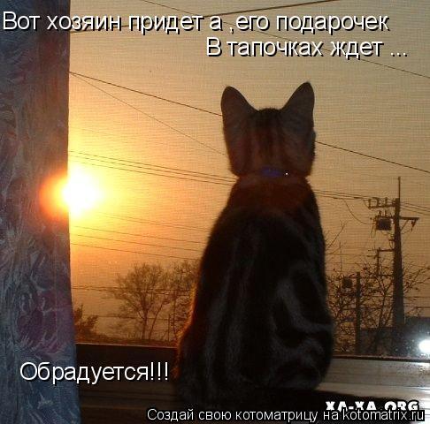 Котоматрица: Вот хозяин придет а ,его подарочек В тапочках ждет ... Обрадуется!!!