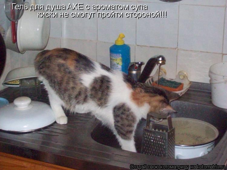 Котоматрица: Гель для душа AXE с ароматом супа киски не смогут пройти стороной!!!